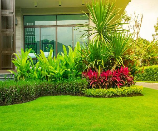 تصميم حدائق في الكويت